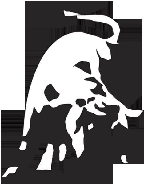 lamborghini-bull