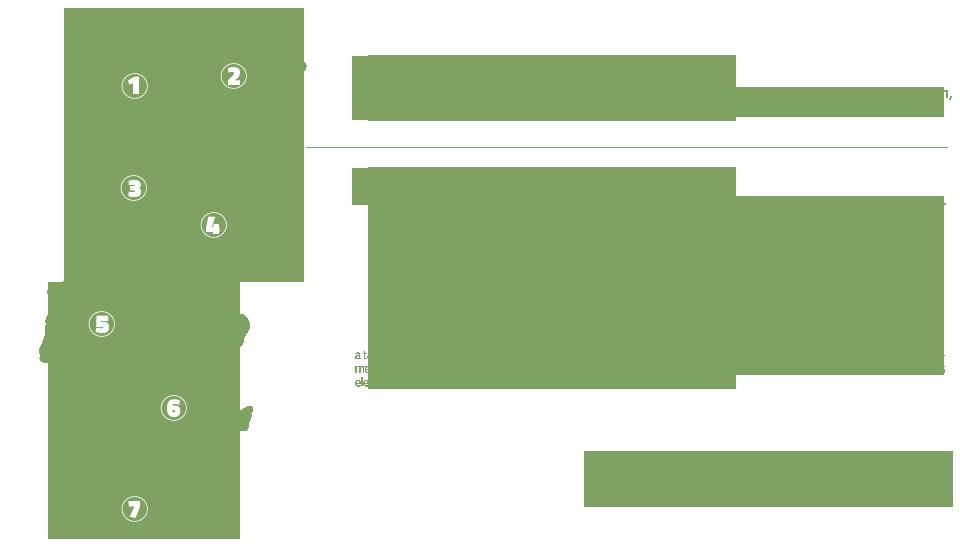 biomassa-04