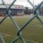 desporto_top