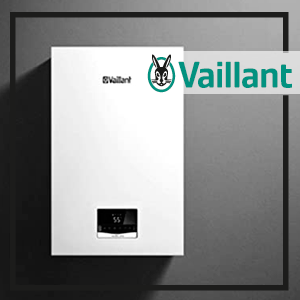 Vaillant-ecotec-intro